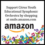 link to support CYESO when shopping amazon.com